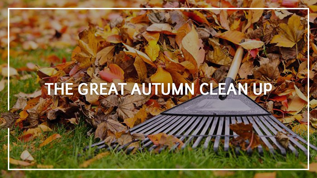 Autumn Cleanup: Prepare Your Home
