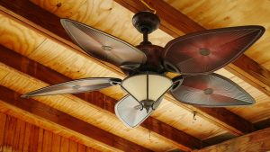 Airbnb Hosting: How to Clean Ceiling Fans for Guest Stays